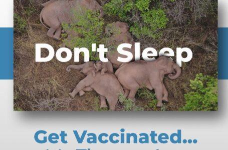 Aimooh Vaccination Campagin